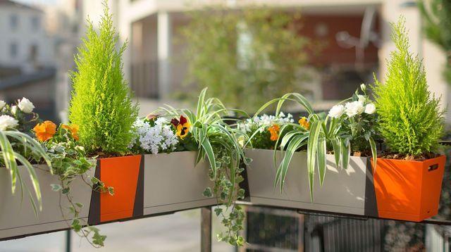 fleurs jardiniere balcon. Black Bedroom Furniture Sets. Home Design Ideas