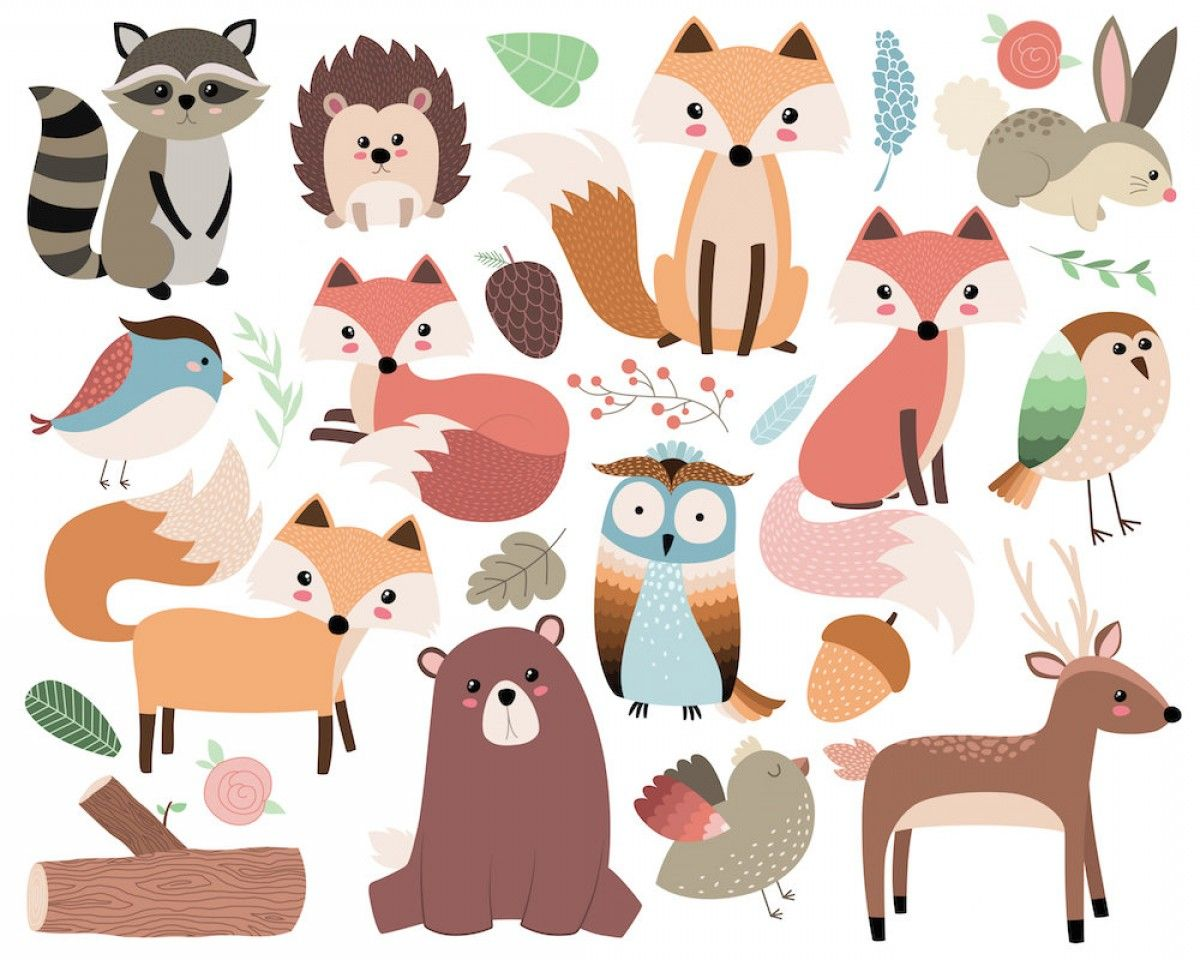 30+ Forest Animal Clipart Vector