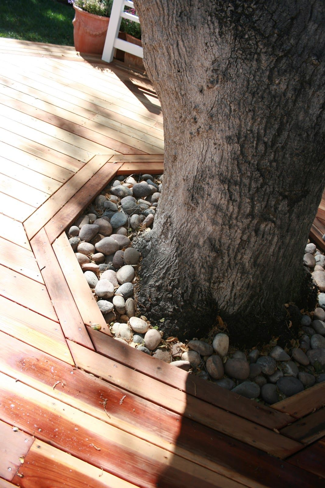 Deck around tree outdoors pinterest ideas para - Arboles terraza ...