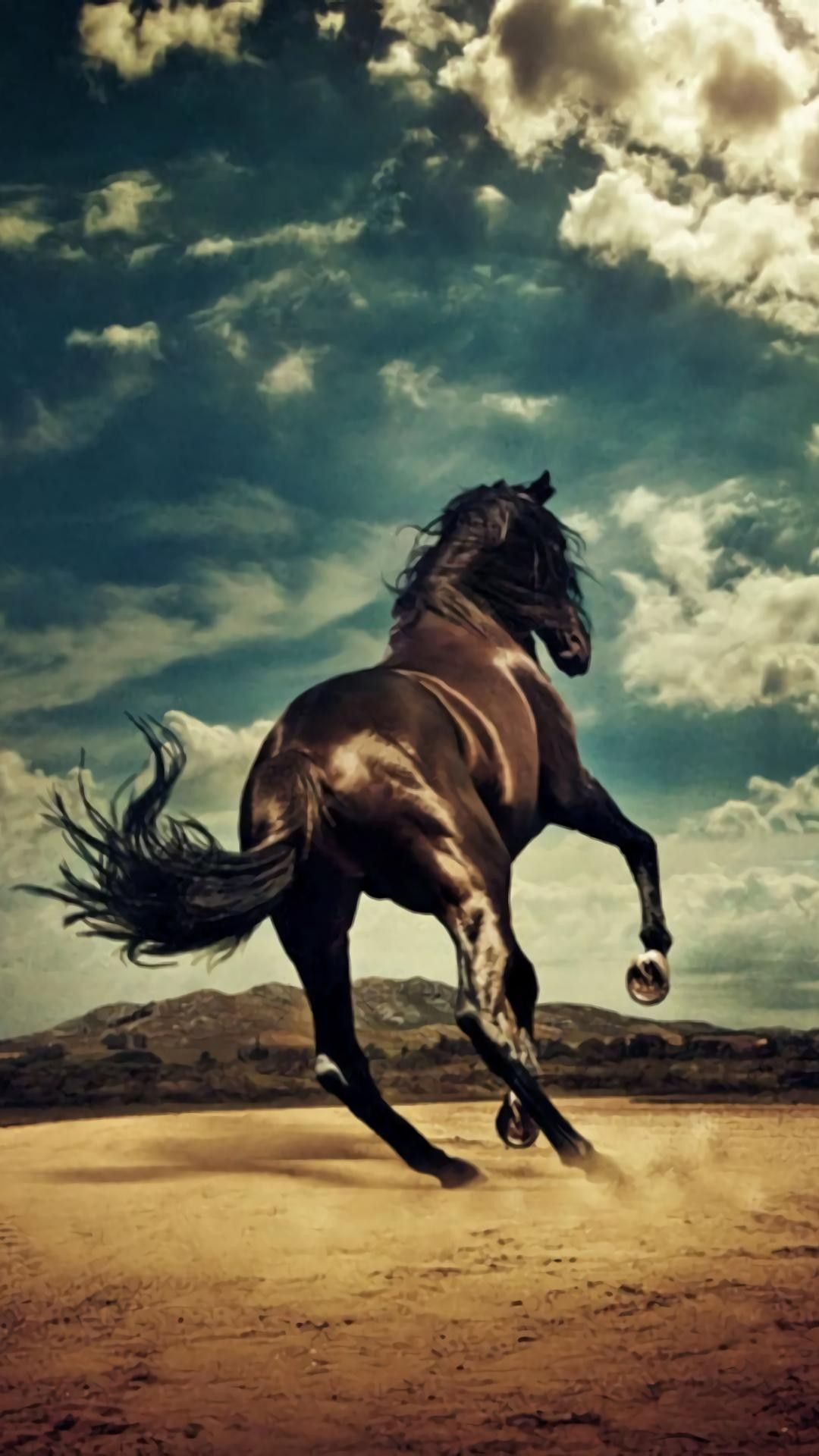 Arte Replay Mustang Gorgeous Horse Hindquarters View Of Horse Running Away Spirited