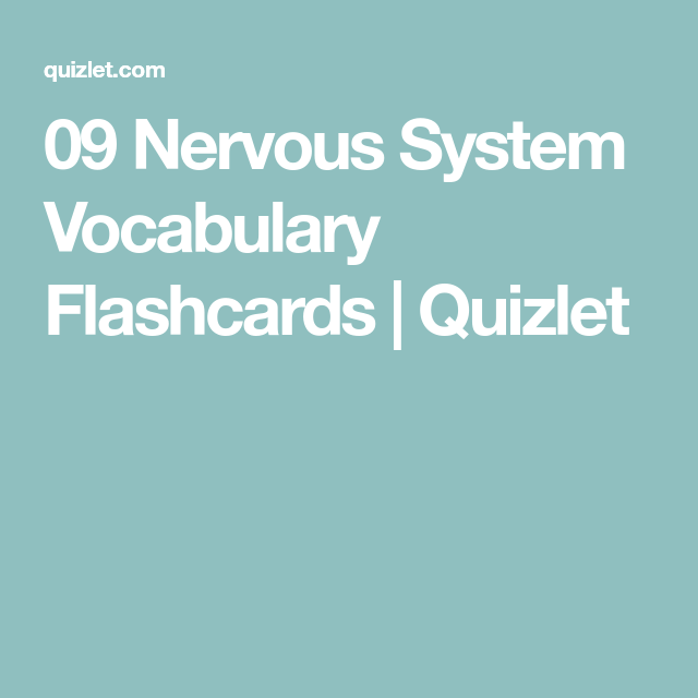 09 Nervous System Vocabulary Flashcards Quizlet
