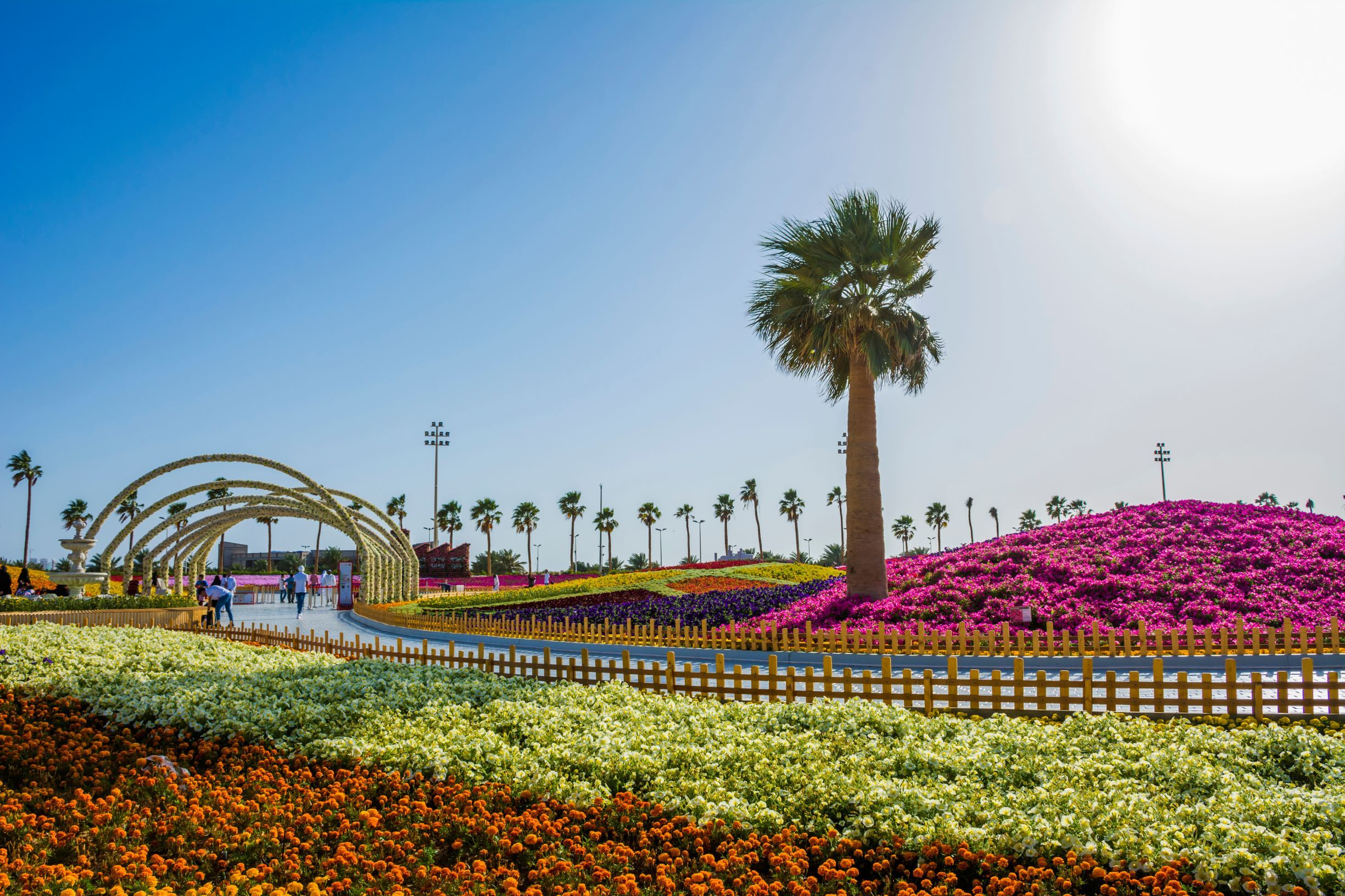 Exploring The Very Best Of Yanbu Beaches In The World Tourism Explore