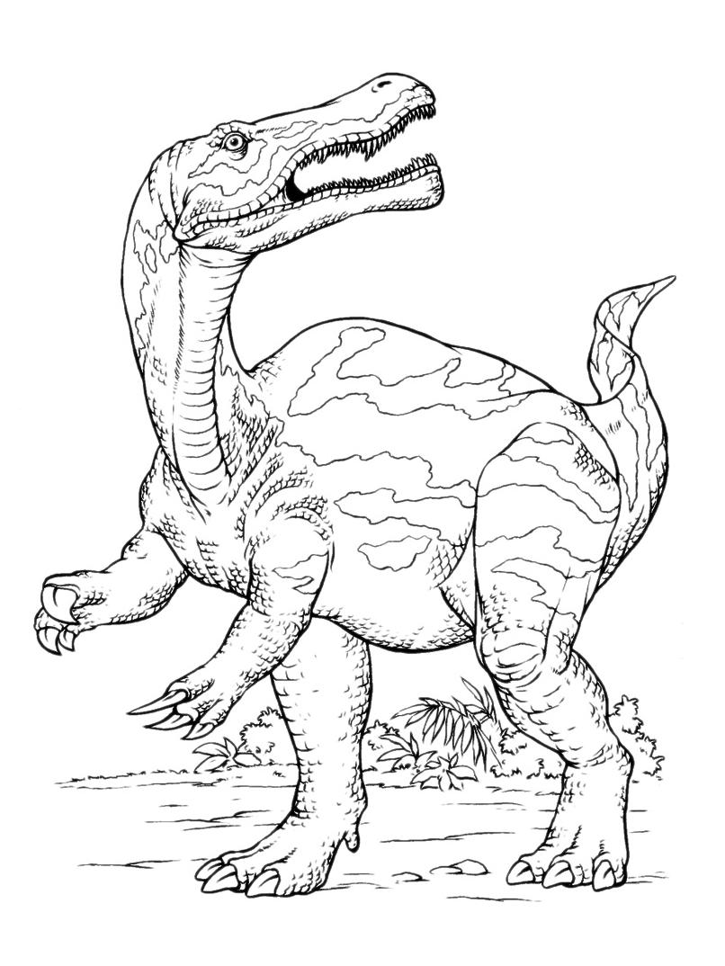Pin Su Dinosauri Disegni Da Colorare