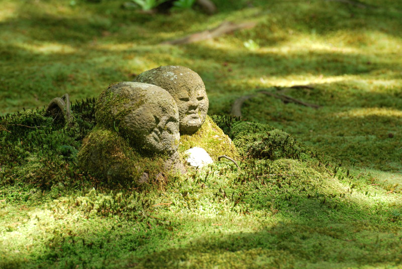 Moss Covered Jizō Buddha Statues @ Sanzen In Temple And Moss Garden Ohara  Japan