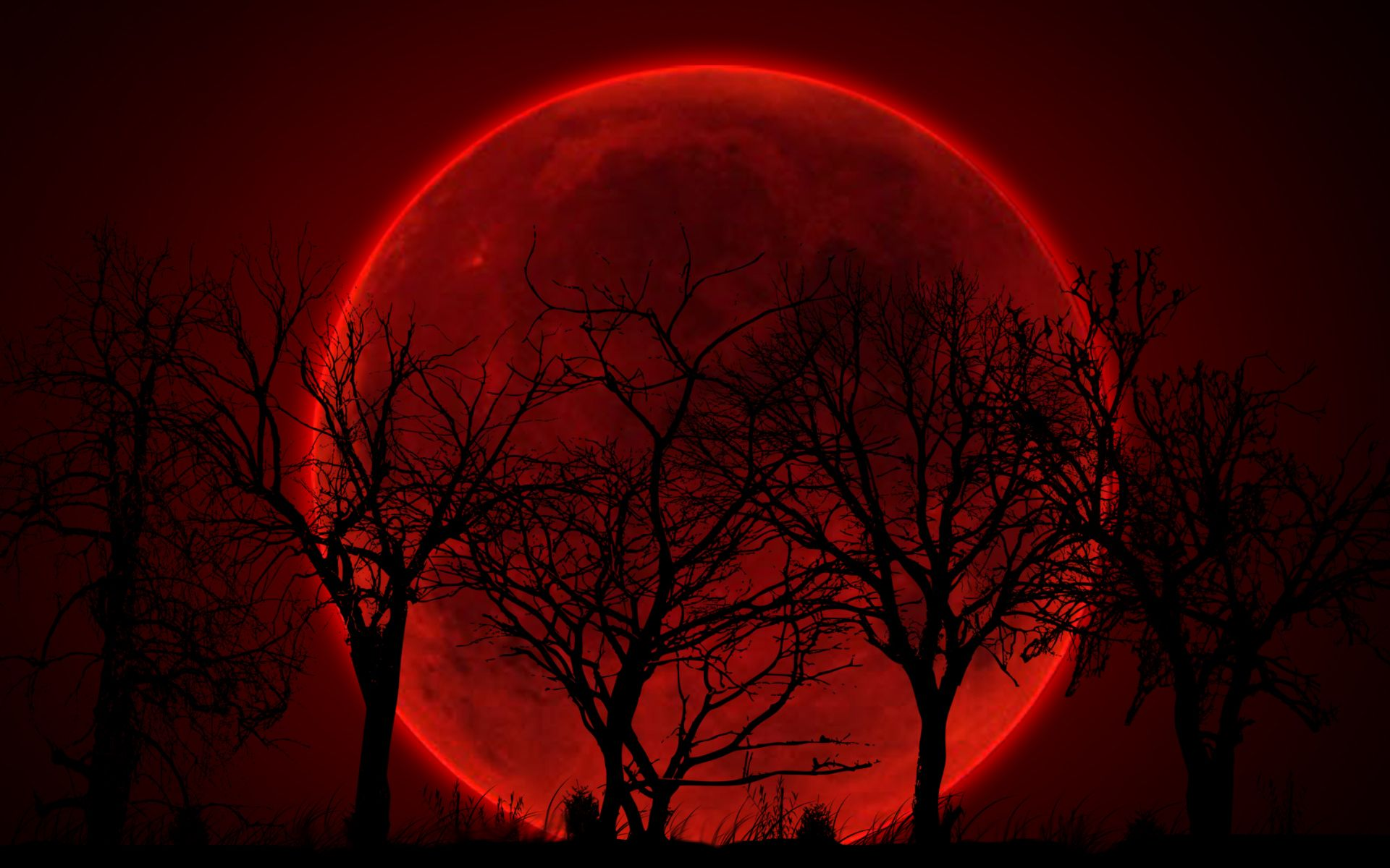 Bloody Red Moon Wallpaper