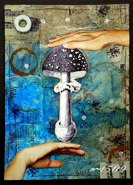 m-1309: ATC - Grzyby / Mushrooms