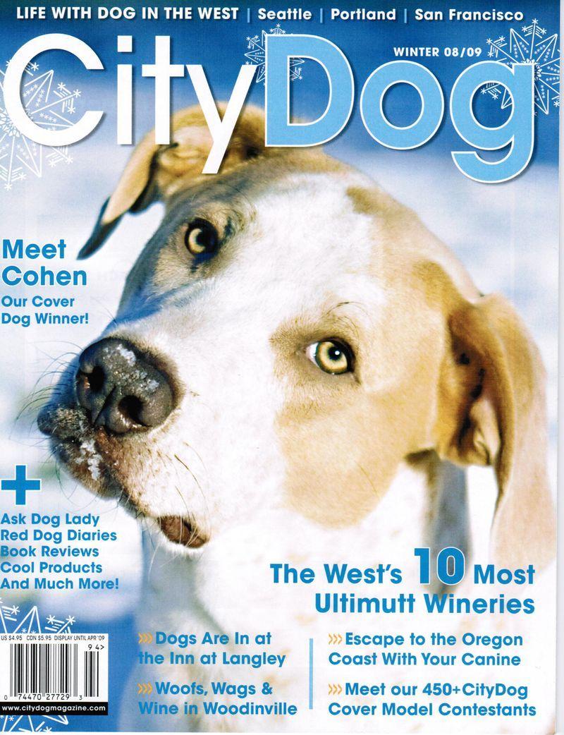 City Dog City Dog Dog Lady Doggie Style