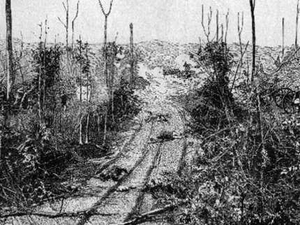 Battle Of Shiloh Hornets Nest