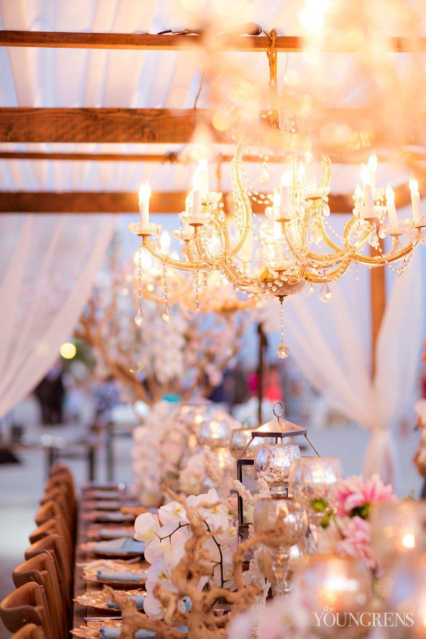 Beach wedding venues in san diego  Hotel Del Coronado Wedding Part Two  Pinterest  Hotel del