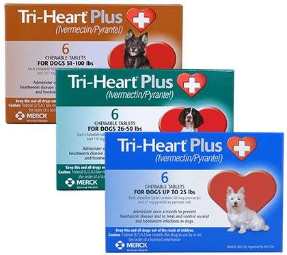 Tri Heart Plus Generic To Heartgard Plus Hookworms In Dogs Heartworm Medication Pet Rodents