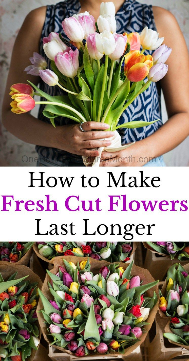 10 tips to make fresh cut flowers last longer long flowers cut 10 tips to make fresh cut flowers last longer flower care tips fresh flowers flower bouquets caring for fresh flowers how to make flowers last longer izmirmasajfo