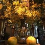 Vrolijke gele kleur komt weer helemaal terug in het interieur. info@pieterszevenbergen.nl