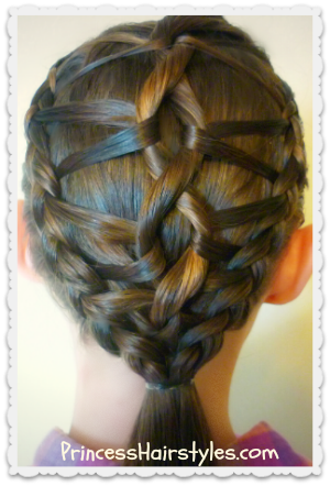 Hairstyles For Girls Hair Styles Braiding Princess Hairstyles Braided Hairstyles Cool Braid Hairstyles Princess Hairstyles