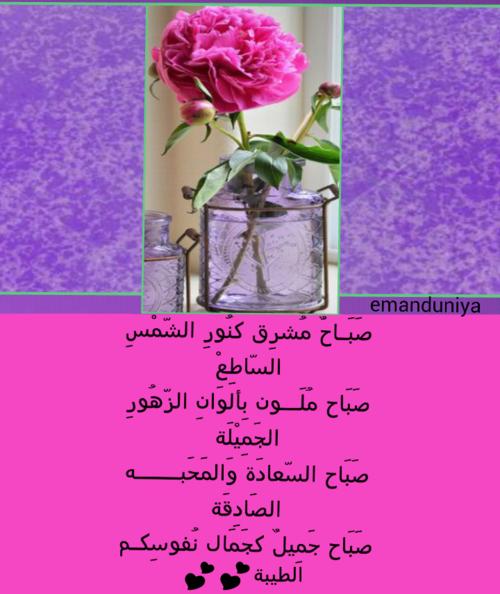 أجمل صور بطاقات صباح الخير لكل صباح مشرق مداد الجليد Morning Messages Good Morning Glass Vase