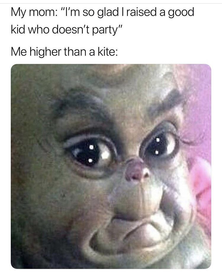 Haha Def My Friend Baby Grinch Funny Pictures Funny Relatable Memes