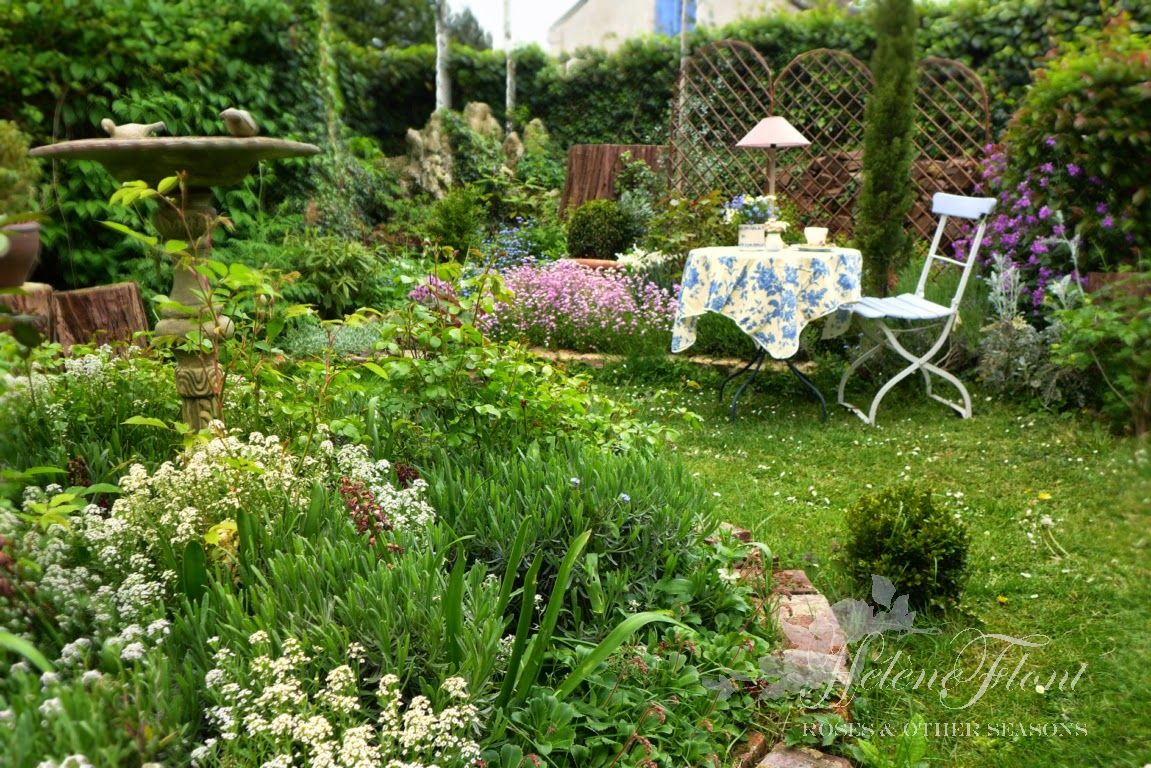 Alysse, Julienne de Mahon ....My spring garden.©  Helen Flont