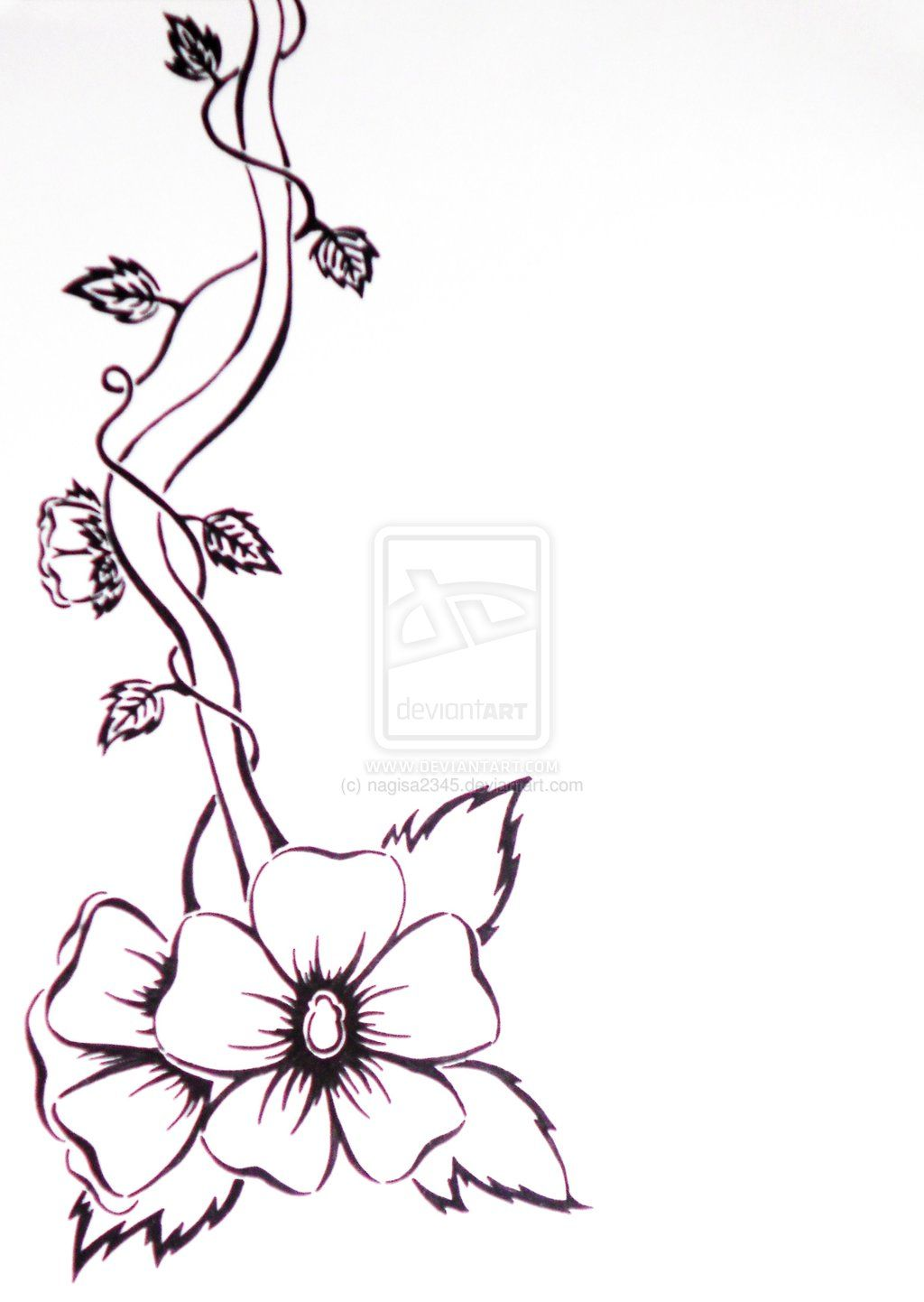 Flower Vines Drawings Black And White Flower And Vine By