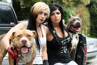 Pit Bulls Parolees Filming Its New Season Pitbulls Pit Bulls Parolees Dogs