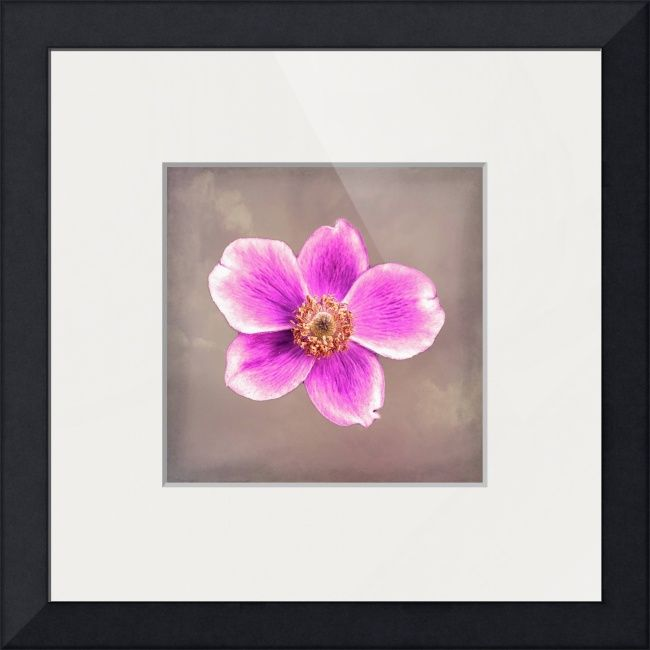 """""""Pink Blossom """" by Fotofrieze Photography,  //  // Imagekind.com -- Buy stunning fine art prints, framed prints and canvas prints directly from independent working artists and photographers."""