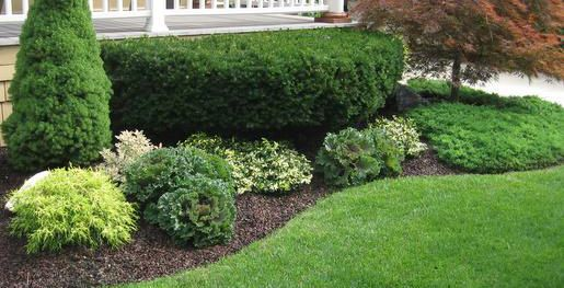 Front Yard Landscaping Ideas Pictures Chester Berks And Montgomery County Front Yard Landscaping Design Front Yard Landscaping Landscaping With Rocks