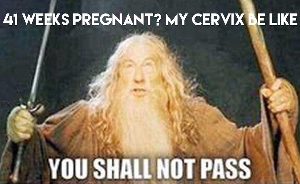 You Shall Not Pass Gas Gandalf Meme Generator
