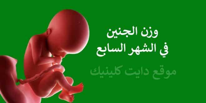 وزن الجنين في الشهر السابع من الحمل ونشاطه الطبيعي دايت كلينيك Uji Advice Movie Posters