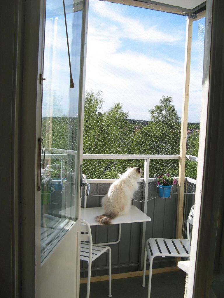 Balcony enclosure cat enclosures pinterest balconies for Balcony surrounds