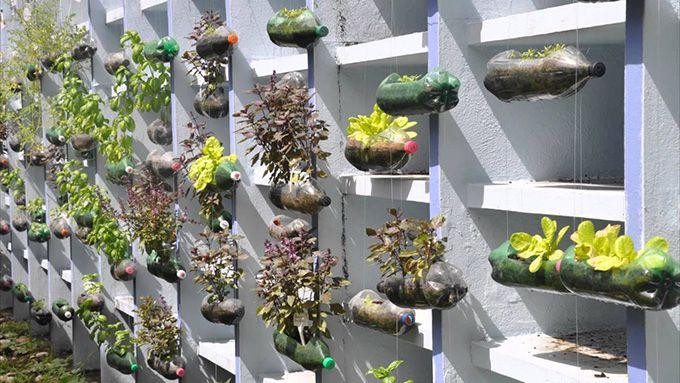 c48d1c60b5f493ddb6140dbf63298557 - Which Plastics Are Safe For Gardening