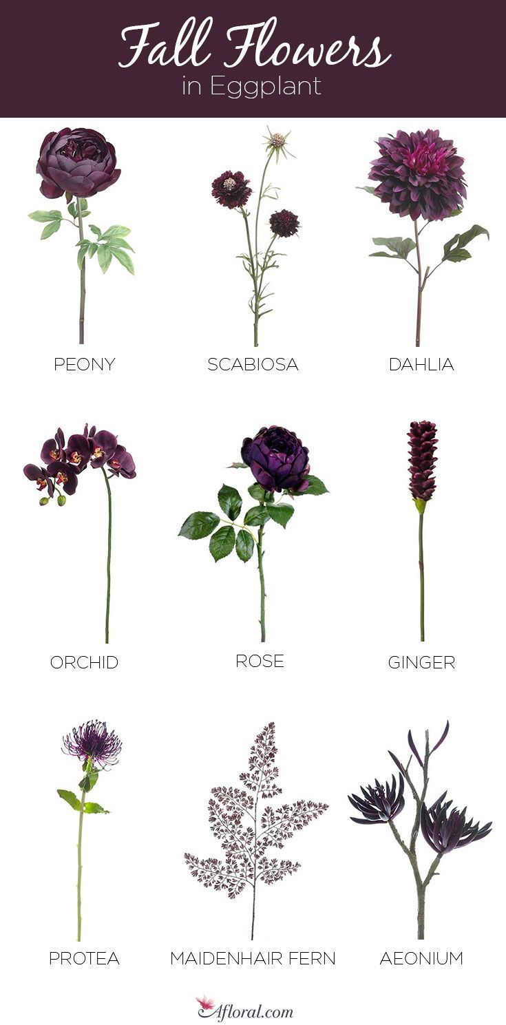 Stunning Silk Fall Flowers in Eggplant #purpleweddingflowers