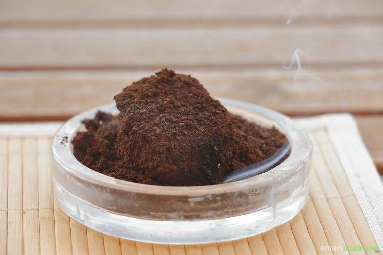 Wespen Fernhalten Effektiv Und Schonend Mit Diesen Tricks Wespen Fernhalten Wespen Vertreiben Gute Ideen