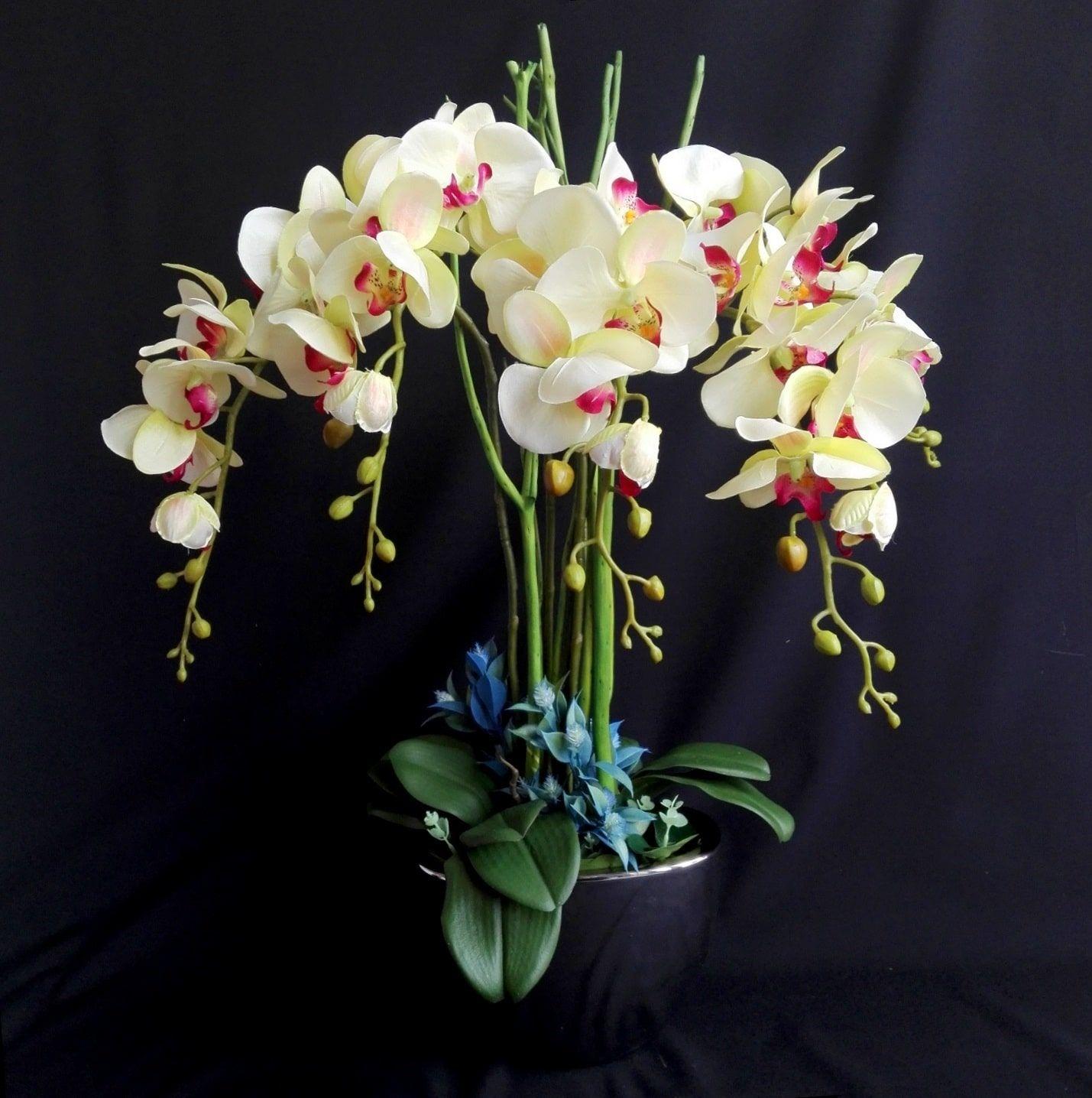 Sztuczny Storczyk Kompozycje Kwiatowe W 2019 Storczyki
