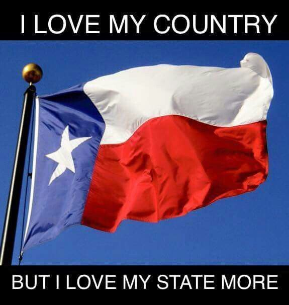 Pin On Texas Pride