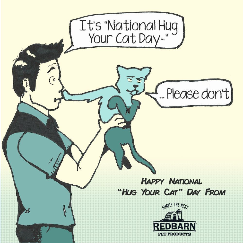 Happy National Hug You Cat Day! Let us know how your cat