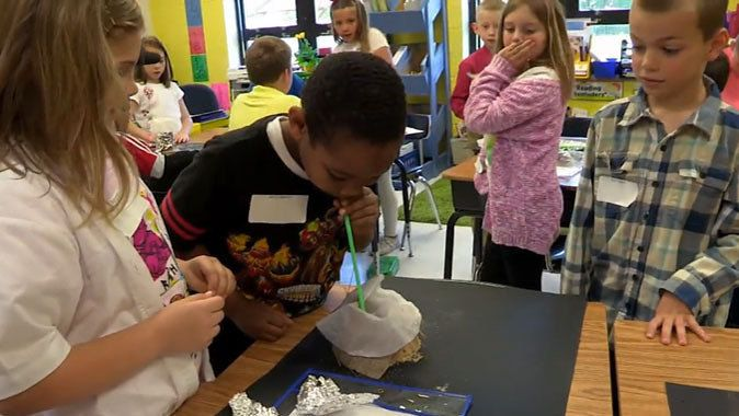 Bringing the NGSS to the 2nd grade classroom. This lesson, Making Claims from Evidence, covers various science concepts in a way to help students understand them.
