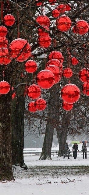 Large Ornaments On An Outside Tree Outdoor Christmas Decorations Outdoor Christmas Christmas Lights