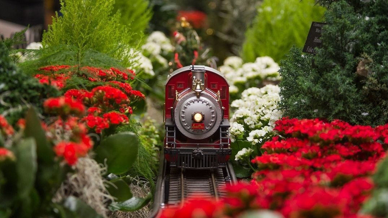 Chicago Botanic Garden presents the Wonderland Express