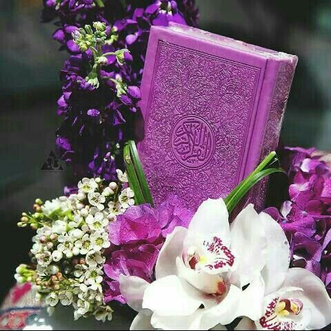 Pin by arfah on Beautiful Mushaf