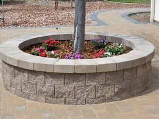 Retaining Wall Around Tree All County Landscaping Description Tree Ring Pavers Retaining Wall Landscaping With Rocks Tree Planters Backyard Trees