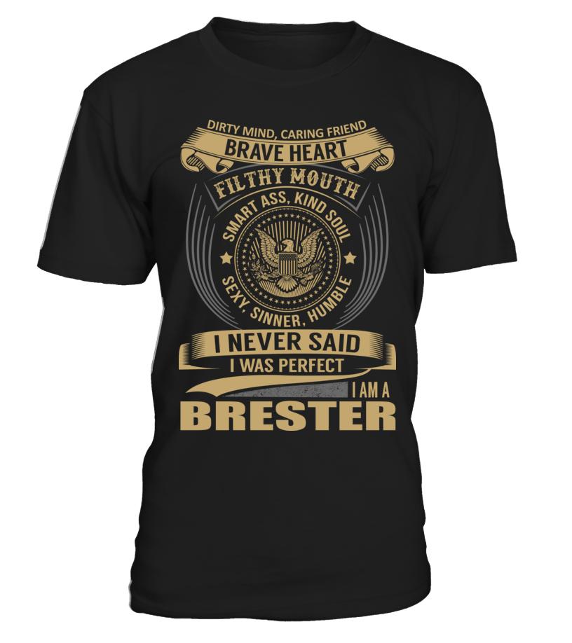 BRESTER - I Nerver Said