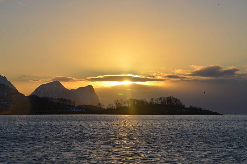 """Eine Reise nach Senja verspricht im Winter ganz außergewöhnliche Naturerlebnisse. Polarlichter flackern in fast jeder klaren Nacht mehr oder weniger intensiv über den Himmel. In den Stunden um die Mittagszeit, wenn sich Dämmerlicht über die Landschaft legt, bieten die verschneiten Berge einen bezaubernden Anblick. Die größte Attraktion von Senja sind Orcas. Um den 20. Januar geht nach 2 Monaten die Sonne wieder über Senja auf. Die """"Rückkehr des Licht"""" ist ein ganz besonderer Moment."""