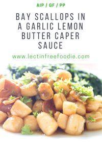 Bay Scallop Appetizer Recipes