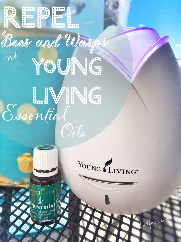 Repelling Bees And Wasps With Young Living Essential Oils