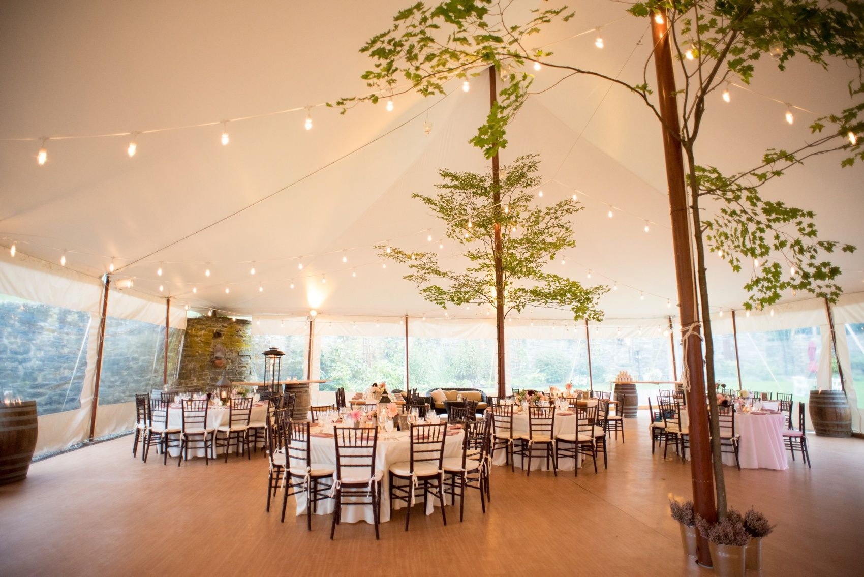 A Red Maple Vineyard Wedding Reception With Trees Under Tent And Pink Dusty Rose Accents