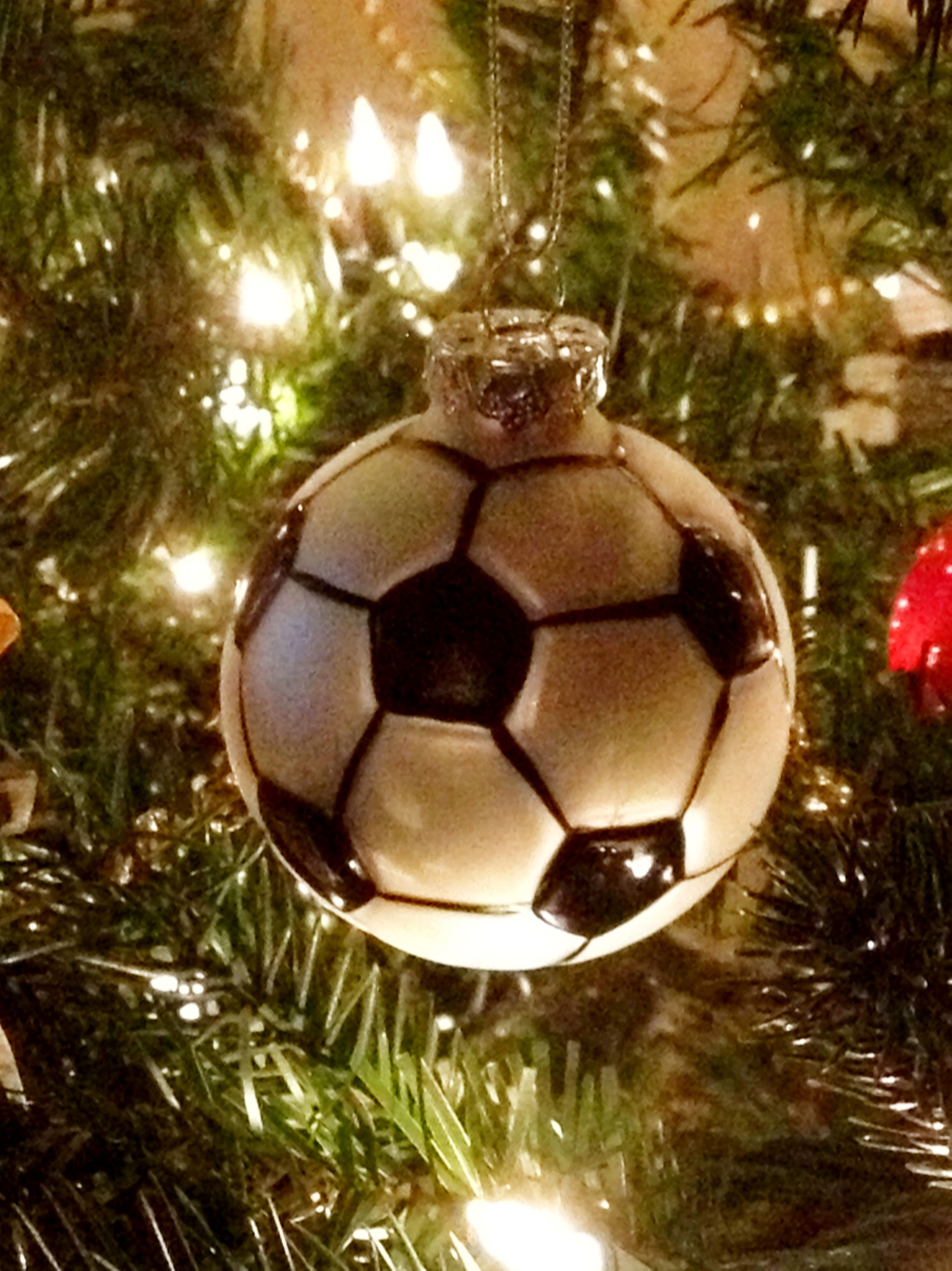 Soccer ornaments - A Soccer Ornament For Our Caity My Beautiful Neice Our Soccer Star