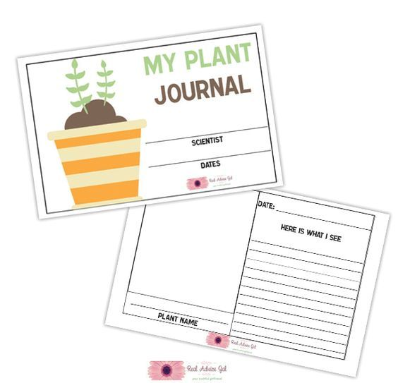 picture about Printable Garden Journal referred to as Totally free printable gardening magazine for youngsters Do it yourself- Child Crafts