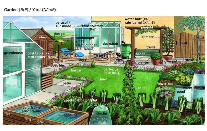 Learning The Vocabulary For A Garden Yard Using Pictures