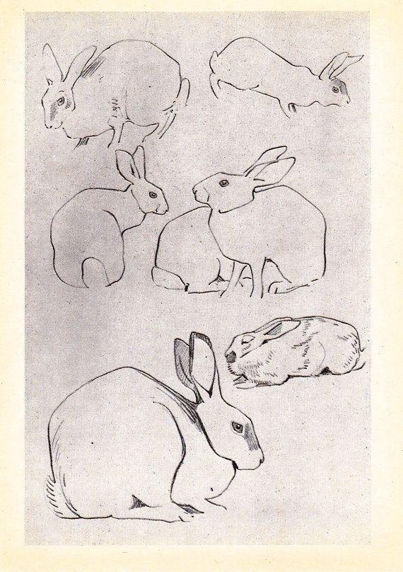 Vintage Vatagin Hare Print  1978. Fine Arts by RussianSoulVintage, $3.00