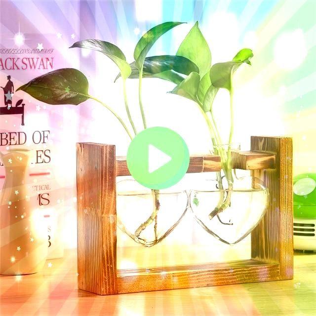 and Wood Vase Planter Terrarium Table Desktop Hydroponics Plant Bonsai Flower Pot Hangi Glass and Wood Vase Planter Terrarium Table Desktop Hydroponics Plant Bonsai Flowe...