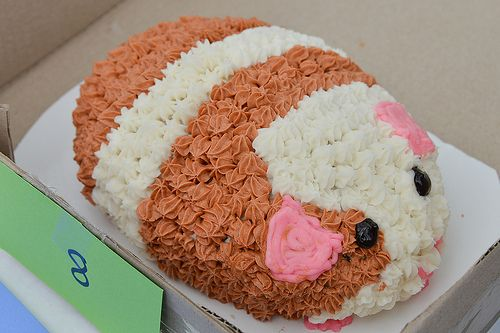One Of The Cavy Themed Cakes Auctioned At PigStock 2013 To Benefit Atlanta Metro Guinea Pig Rescue