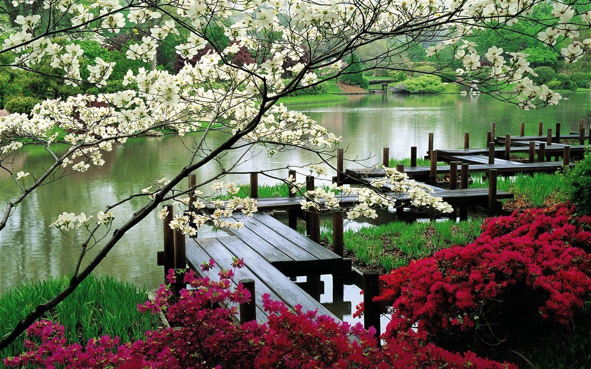 Japanese Garden | Japan, Garden And Untouchedxxx